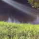 Green Grass, River and Sun - VideoHive Item for Sale