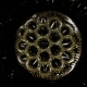 Fantastic Patterns and Shapes. Ferrofluid and Paint. . - VideoHive Item for Sale