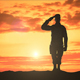 Saluting Army Soldier Silhouette - VideoHive Item for Sale