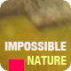 Company Promo - Impossible Nature - VideoHive Item for Sale