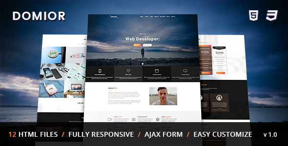 Download DOMIOR - Creative Personal Portfolio Template Nulled