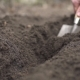 of a Farmer's Hand Making Grooves for Planting a Plant - VideoHive Item for Sale