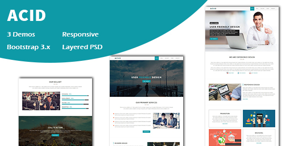 Acid - Multipurpose Responsive One page HTML Template - Corporate Site Templates