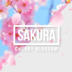 Sakura | Cherry Blossom - VideoHive Item for Sale