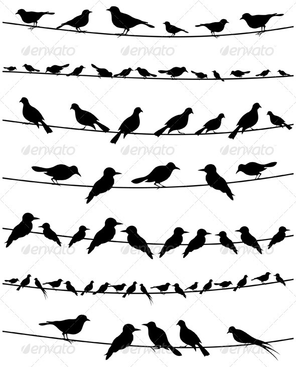 Bird on a wire2 - Animals Characters