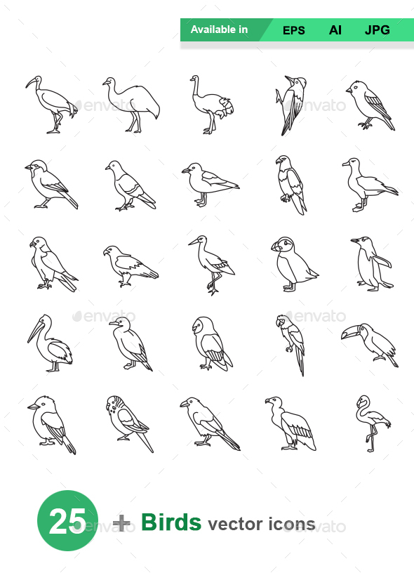Birds Outlines Vector Icons - Animals Characters