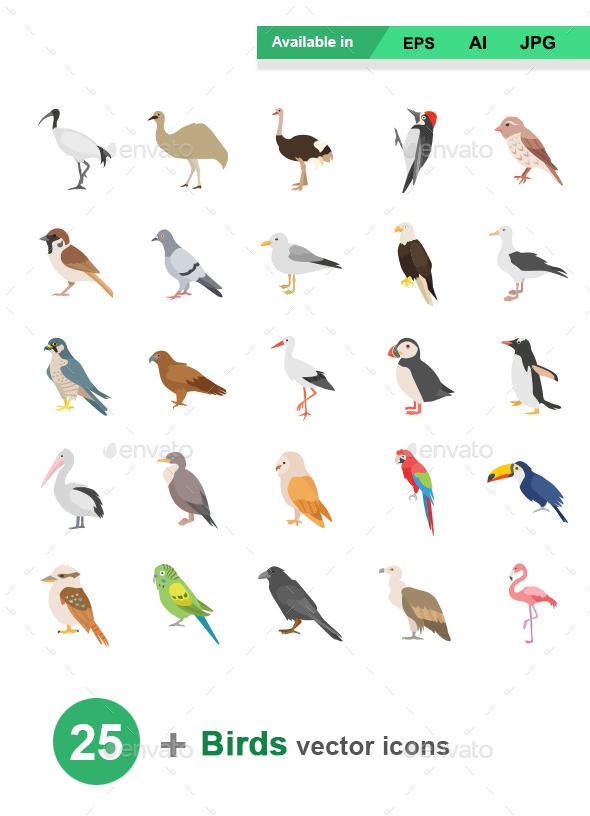Birds Color Vector Icons - Animals Characters