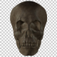 Ancient  Human  Skull - VideoHive Item for Sale