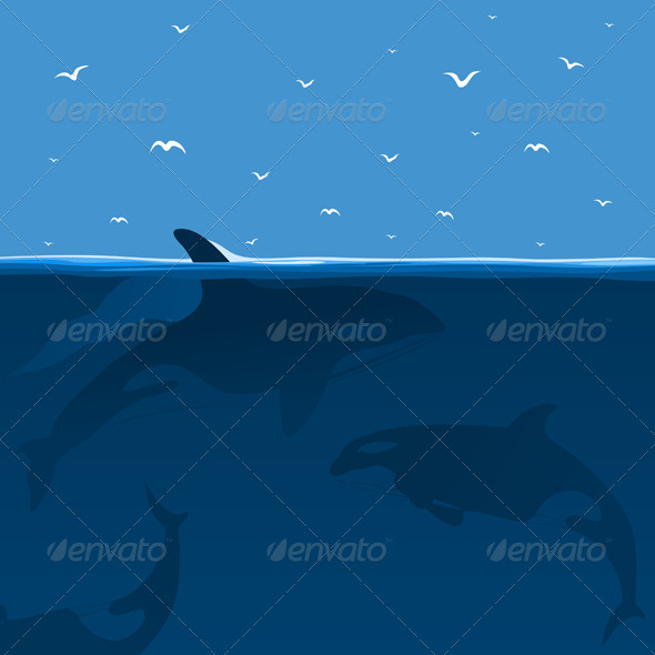 Hunting of whales - Animals Characters