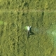 Vertical Motion Flight Over Businessman Lying on Fresh Green Meadow. Top View on Relaxing Man. - VideoHive Item for Sale