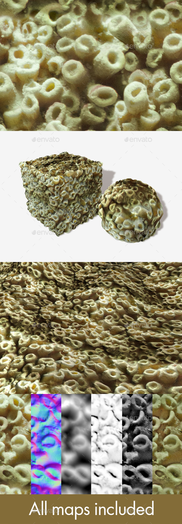 Sea Coral Seamless Texture - 3DOcean Item for Sale