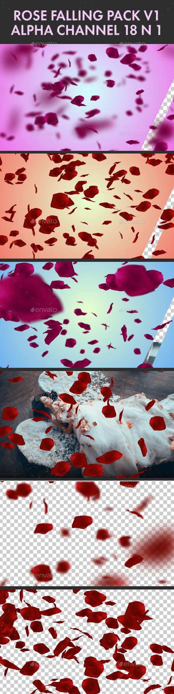 Falling Rose Petals Pack V1 18 n 1 - Nature Backgrounds