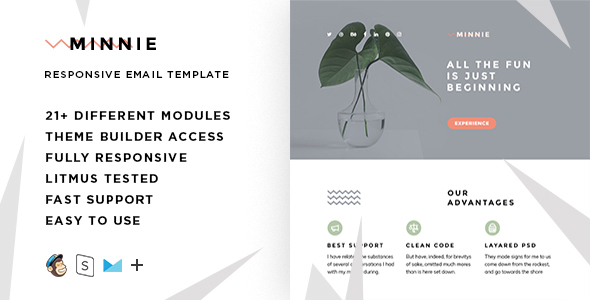 Minnie – Responsive Email + StampReady Builder - Email Templates Marketing