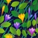 Floral Seamless Pattern with Crocuses. - GraphicRiver Item for Sale