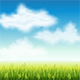 Summer Field of Grass - GraphicRiver Item for Sale