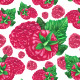 Raspberry Watercolor Pattern