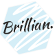BRILLIAN - Photography & Personal Blog Nulled