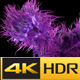 Dance Man Hair Alpha 4K Loop - VideoHive Item for Sale