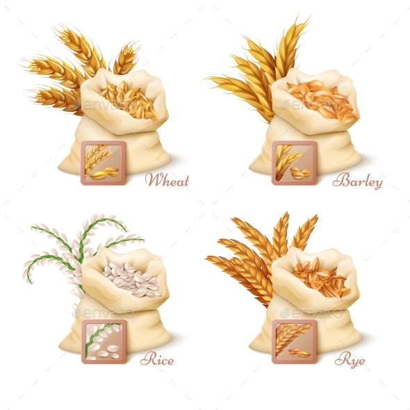 Agricultural Cereals - Wheat, Barley, Oat and Rice - Food Objects