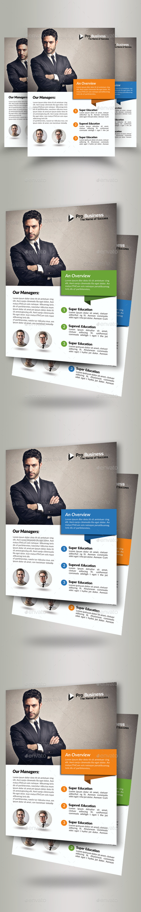 Business Solutions Consultant Flyer - Corporate Flyers
