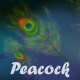 Peacock Feathers Loop V3 - VideoHive Item for Sale