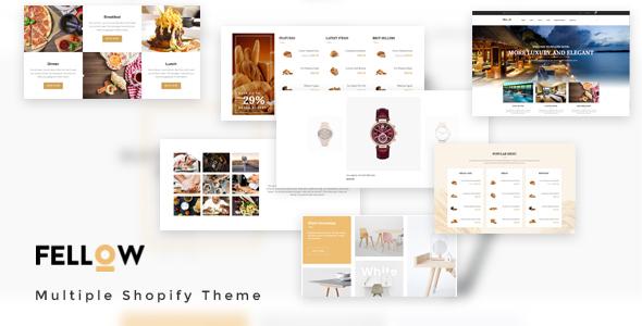 Ap Fellow Shopify Theme - Miscellaneous Shopify