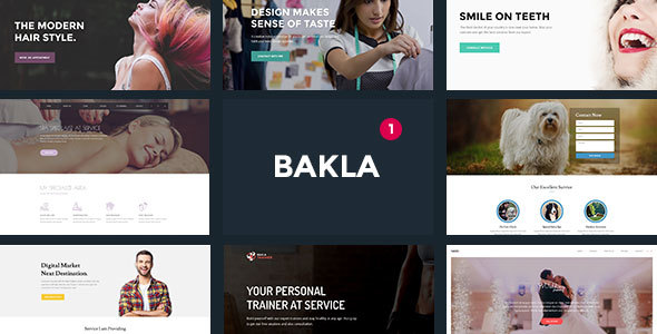 Bakla – Multipurpose Business Landing Page