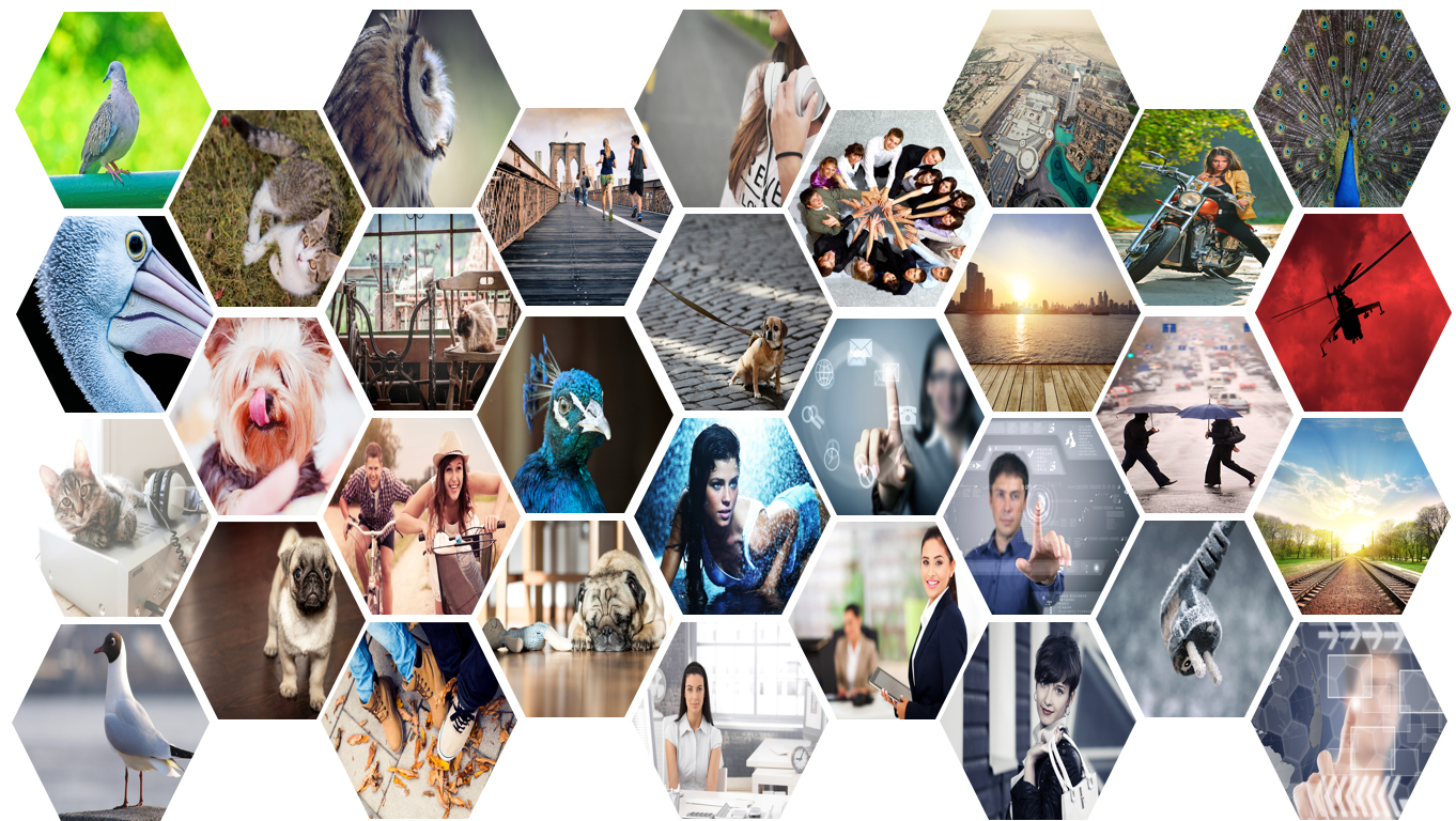 Photo Collage Template Powerpoint Zrom