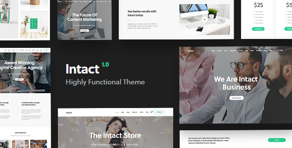 Intact - Premium Multi-Purpose WordPress Theme