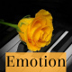 Inspiring Piano and Emotional Orchestra Pack - AudioJungle Item for Sale