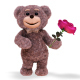 Teddy Bear (2-Pack) - VideoHive Item for Sale
