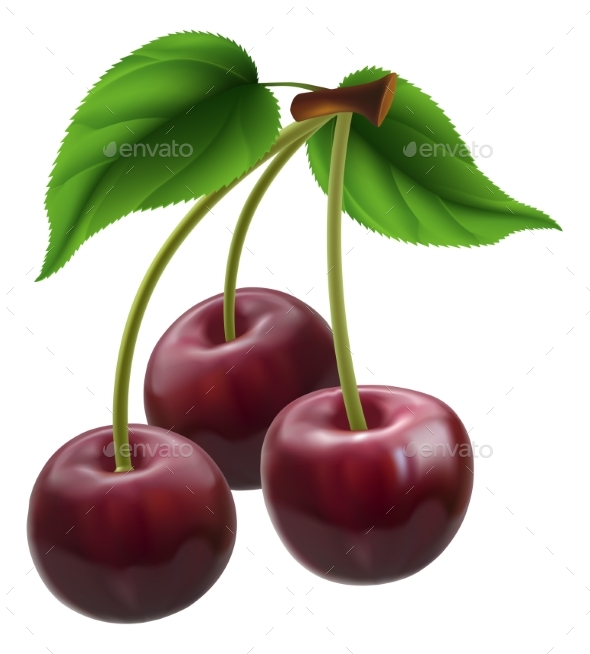 Bunch of Three Cherries - Food Objects