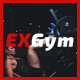 Ap Exgym - ThemeForest Item for Sale