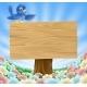 Blue Bird Wooden Nature Sign
