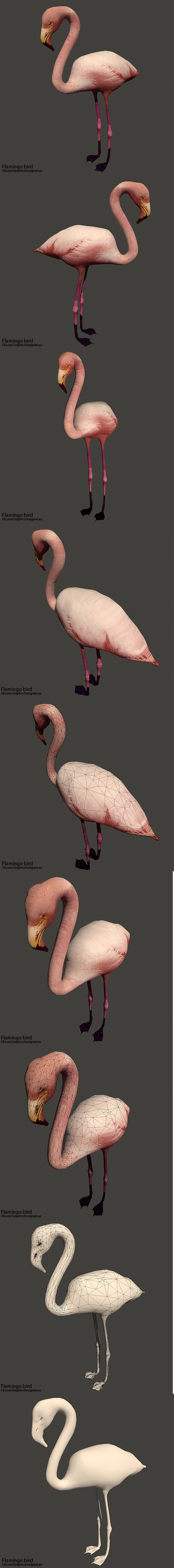 Flamingo bird ( Full Textures ) - 3DOcean Item for Sale