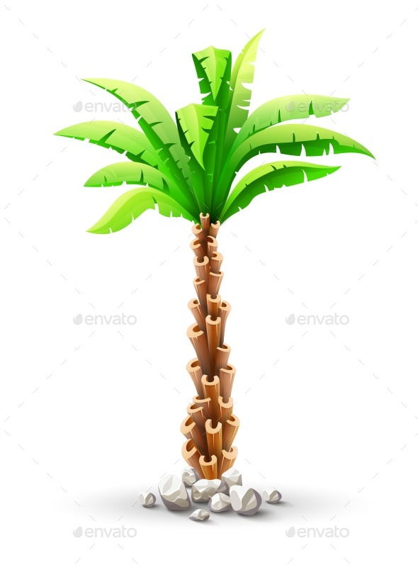 Tropical Coconut Palm Tree with Green Leaves - Flowers & Plants Nature