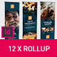 Rollup Stand Banner Display Digital Dark 12x Indesign Template - GraphicRiver Item for Sale