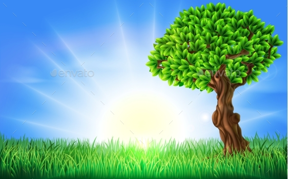 Sunny Field Tree Background - Landscapes Nature