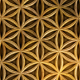 Akashic Flower Of Life Pattern 01