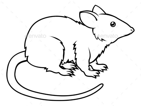 Stylized Rat Illustration - Animals Characters