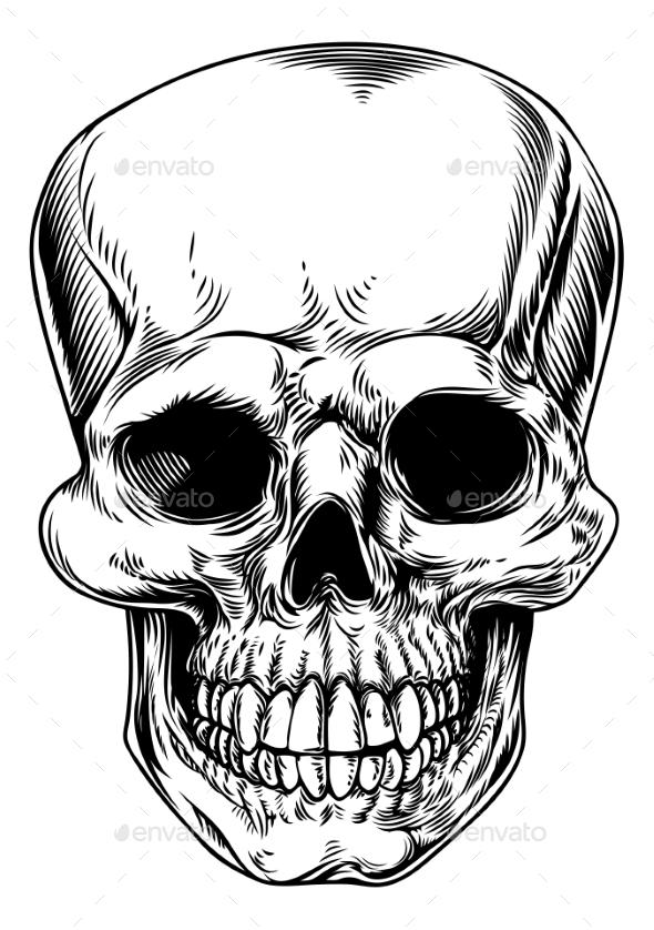 Vintage Skull Illustration - Miscellaneous Vectors