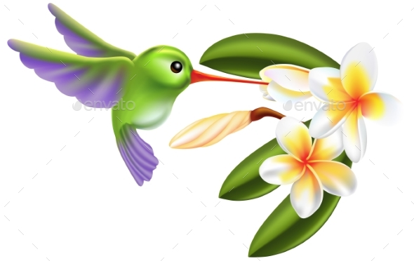 Humming Bird and Flowers - Animals Characters