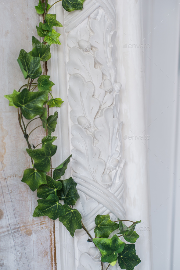 White art stucco gypsum wall with a grean loach branch on it - Stock Photo - Images