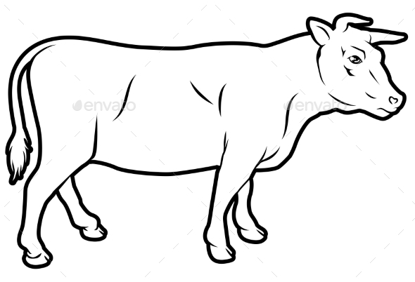 Beef Cow Illustration - Animals Characters