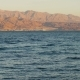 Red Sea Water with Jordan's Mountains in the Horizon - VideoHive Item for Sale