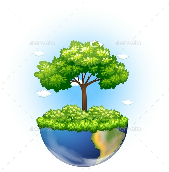 Green Tree Growing on Earth - Flowers & Plants Nature