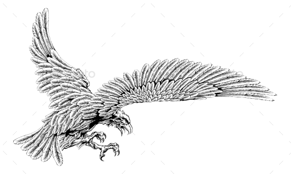 Swooping Eagle - Animals Characters