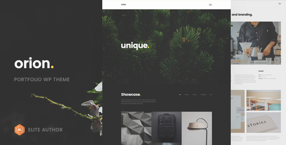 Orion – Minimal Portfolio WordPress Theme