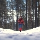 Beautiful Young Woman Hiking with a Backpack in Beautiful Winter Forest. Nulled