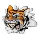 Attacking Tiger Head